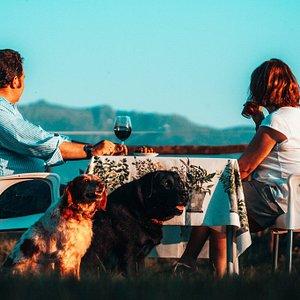 Nuestra terraza con las mejores vista y dogfriendly