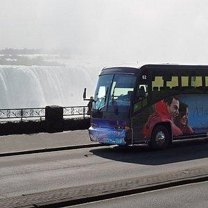 Magnificent Tours Bus