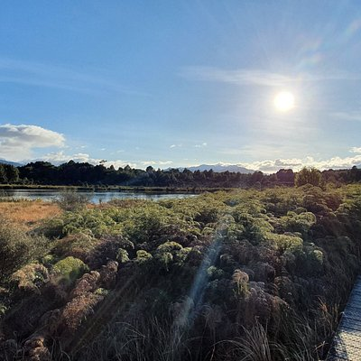 lake Mistletoe walk