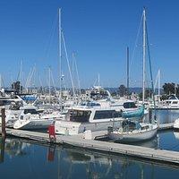 Ballena Isle Marina, Alameda, Ca