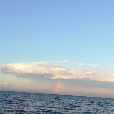 Финский залив, Невская губа.
