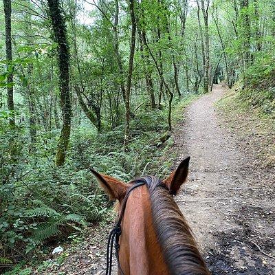 Fantásticas rutas a caballo por la zona de Taramundi