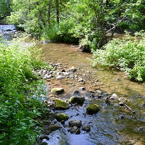 Stream on the side trail