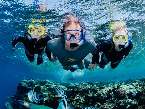 Amazing snorkeling with just 10 Passengers....