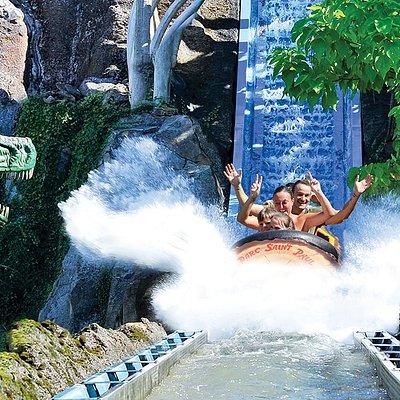 Dino Splash