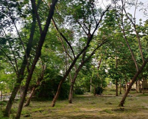 Town park , Faridabad,