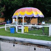 Cool Amusement Park!