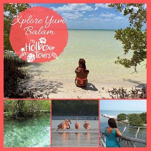 El tour más completo para descubrir toda la costa de Holbox, haciendo 4 paradas: nadar en Yalahau, ver Isla Pájaros, explorar Isla Pasión y buscar flamencos en Punta Mosquito.