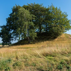 The Hvedshøj burial mound is among the largest of its kind in the region of Roskilde. It was built about 1.400 BC and is the burial place of a squire from the Bronze Age.  During excavations in 1862 a bronze sword coated in gold was found. There is free access to the mound from the top of which there is an impressive view. It is situated south east of the road from Himmelev about a kilometre before Hvedstrup.