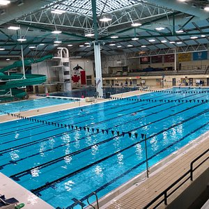 50m pool from viewing deck