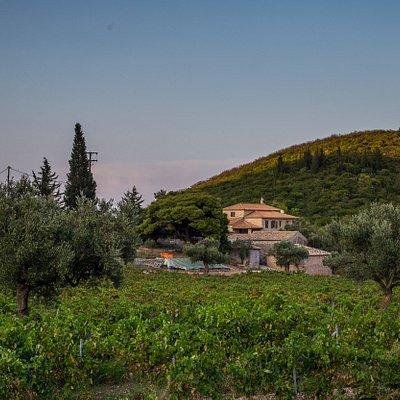 Goumas Estate Winery - Art & Wine