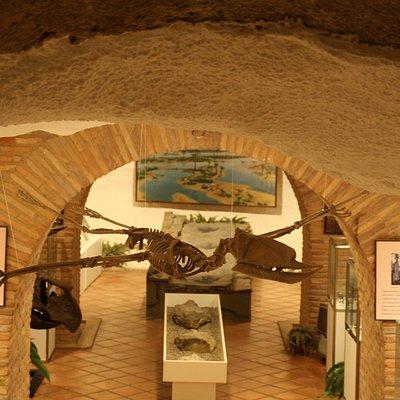 Réplica de Pterodactylus