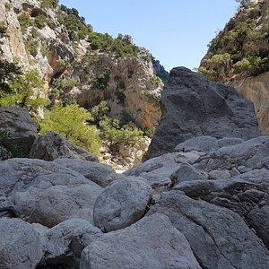All'interno del canyon