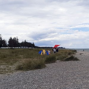 Gammendorfer Strand