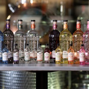 Our collection of award-winning gins!