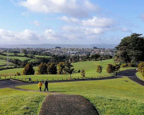 Totara Park Lookout view