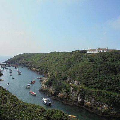 The view of the harbour from the coastal path