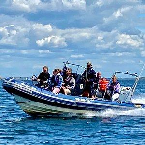 Dolphin RIB 7 met 250 PK Honda Outboard en 11 zitplaatsen