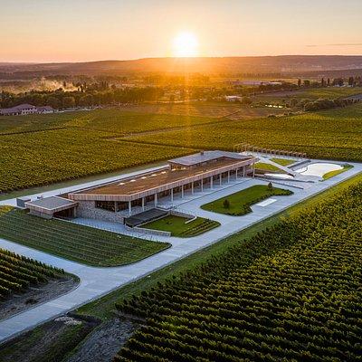 Имение «Сикоры» - это не только современная винодельня и команда профессионалов, влюбленных в свое дело и создающих одно из лучших российских вин, но и уникальный центр эногастрономического туризма.  Во время тура вы сможете насладиться великолепными виноградниками, совершить увлекательное путешествие в производственный цех, в погреба, где вино находится на выдержке в дубе и бетоне, а также испытать весь спектр позитивных эмоций от дегустации, которая проходит в уникальном стеклянном зале.
