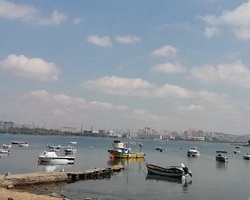 Mercan Sahili