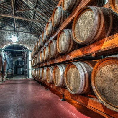 Unidos pelo prazer de partilhar bons vinhos desde 1914 United by a taste for sharing good wines since 1914
