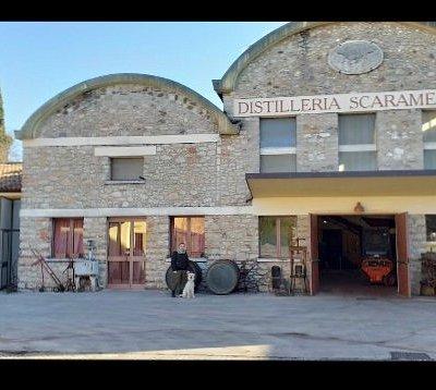 Distilleria Scaramellini Lago di Garda