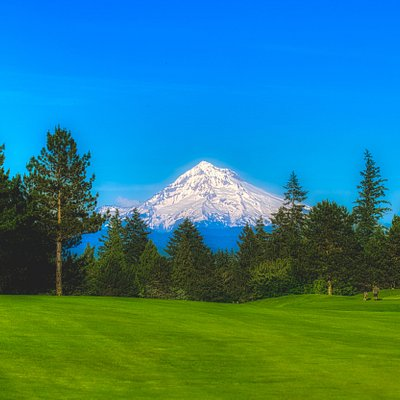 View from the course: Mt. Hood