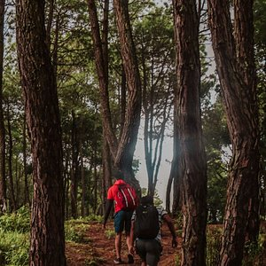 Hiking route to Dahachowk.   Dahachowk is definitely one of the trending hiking/cycling/biking destinations within and around Kathmandu Valley
