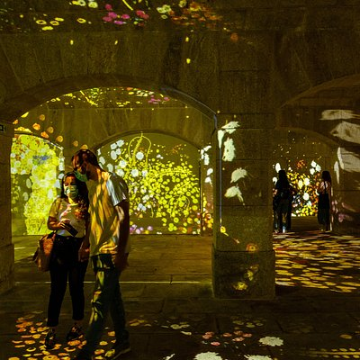 """Impressive Monet & Brilliank Klimt"". Mais info / More Info:  www.immersivus.com"