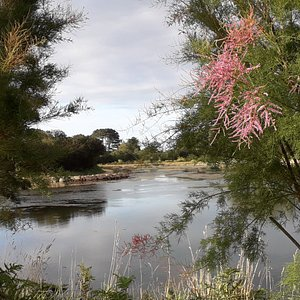 Lac des cygnes,  Espace de loisirs de Poul Palud à Trégastel.