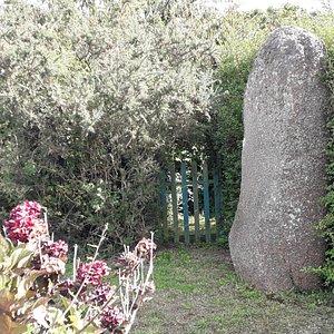 Menhir de Trémarche à Trégastel.