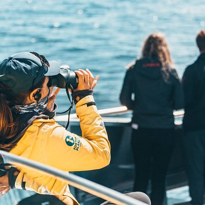 Naturalist Lili looks through her binoculars to scan for whales! Photo by: Vanlife.Sagas