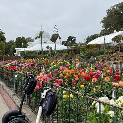 Segway to the Dahlia Garden at the Conservatory of Flowers in Golden Gate Park