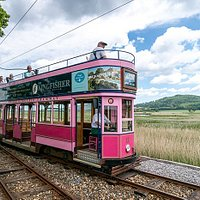 Tram 11 (pink) travelling south to Seaton