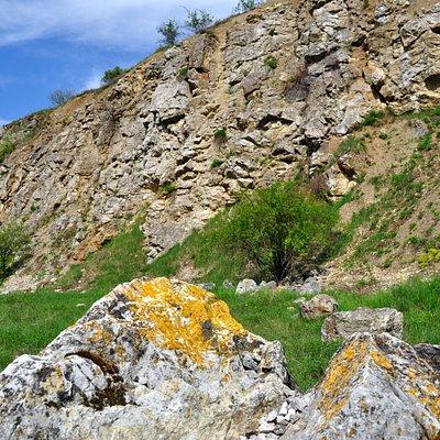 Wietrznia Nature Reserve