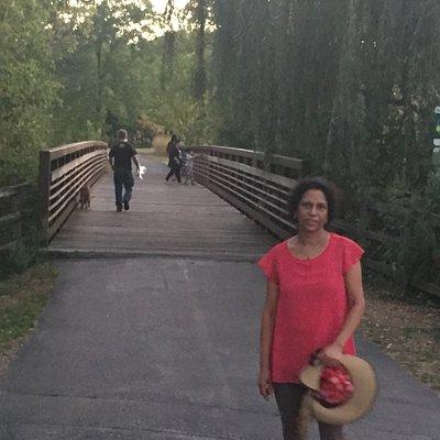 Lovely bridge across Salt Creek in Oak Brook