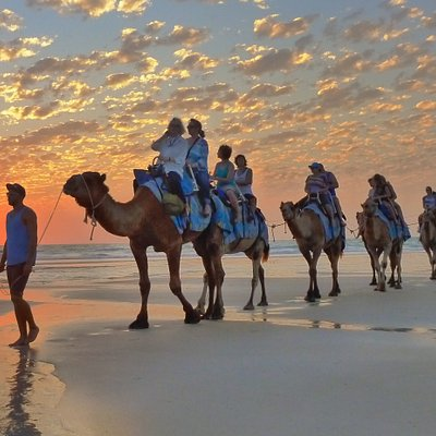 Beautiful Sunset from the back of a camel