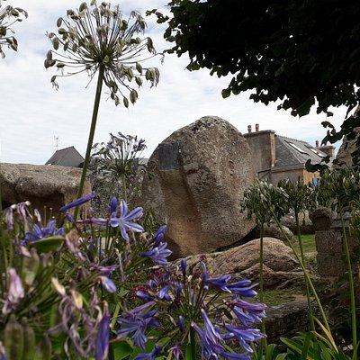 Vue sur les rochers avec les bronzes de Léon Durocher et Charles Le Goffic derrière les agapanthes du jardin de la Chapelle Ste Anne des rochers à Trégastel.