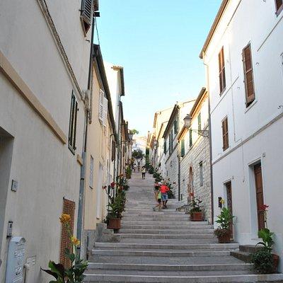 Costarella