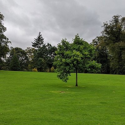 Castlebank Park