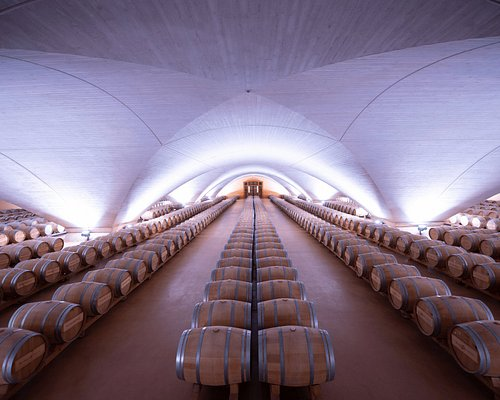 "Sala de barricas, la ""Catedral del Vino"""