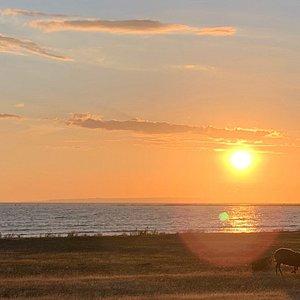 Sunset at Kronvalds