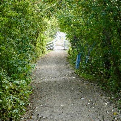 Beautifully developed pathways and bridges