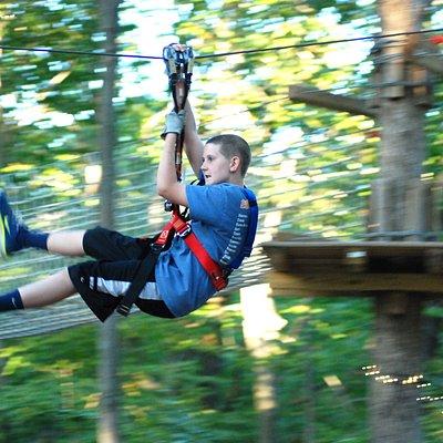 Zipline and climbing fun!
