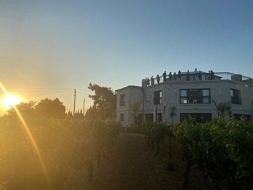 Gün batımında Çakır Winery