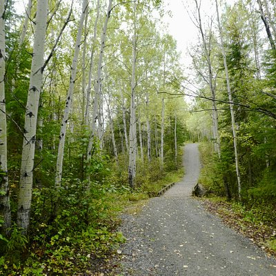 A great trail for running, walking, and getting some fresh air