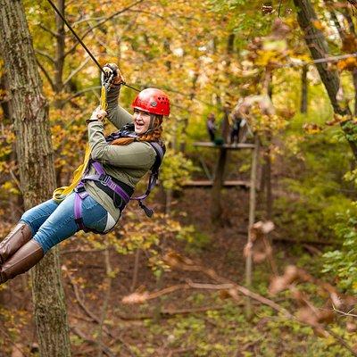 Fall foliage zipping!
