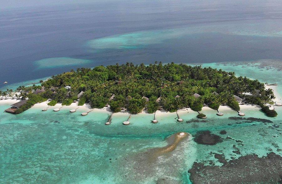 transmitir Ambigüedad Levántate  NIKA ISLAND RESORT & SPA - Updated 2021 Prices & Reviews (Kudafolhudhoo  Island, Maldives) - Tripadvisor
