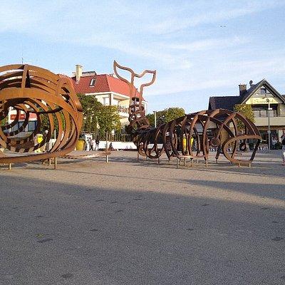 Plac Wieloryba