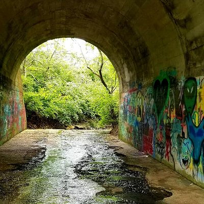 Graffiti tunnel on an offshoot trail